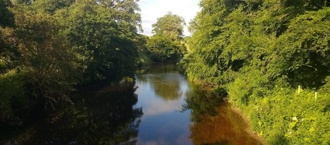 The River Endrick in Summer